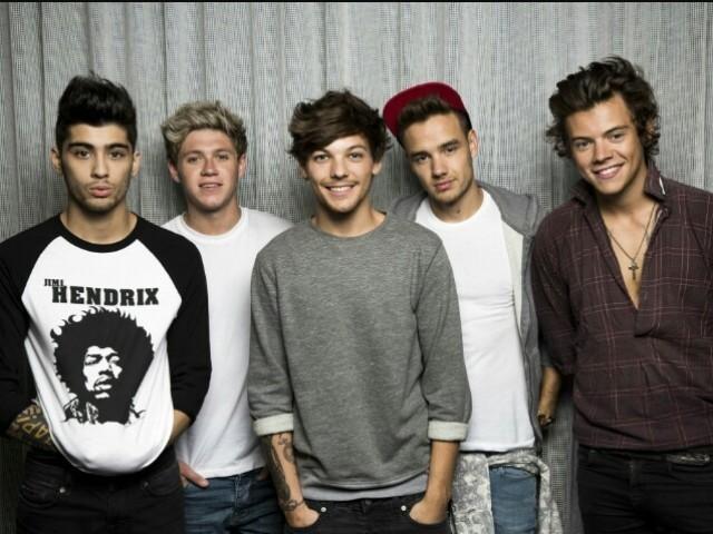Qual membro do One Direction seria seu namorado?