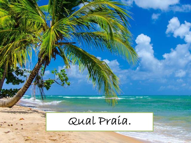 A qual praia você deve ir no verão?
