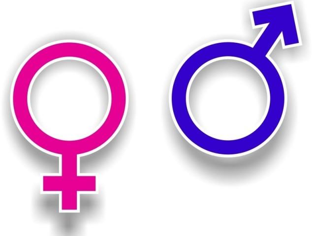 Você é menino ou menina?