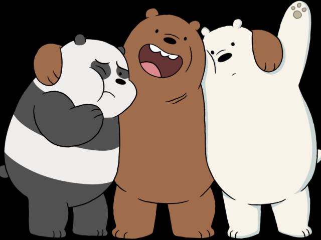Voce conhece ursos sem curso