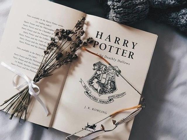 Com qual garoto você namoraria em Harry Potter? ⚡️