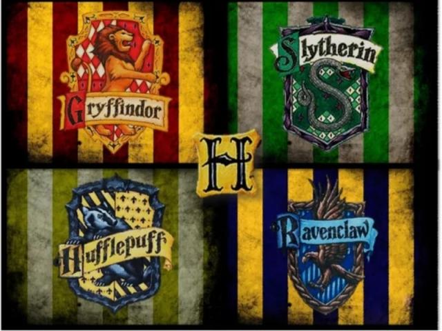 Qual a sua casa em Hogwarts? 🦁🐍🦅🐿