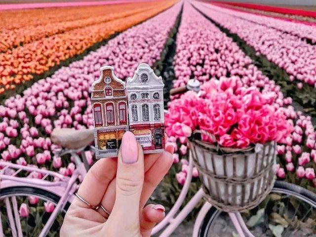 Monte sua sessão de fotos em Amsterdã!