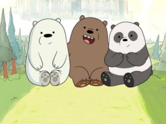 Você é mais pardo, panda ou polar?