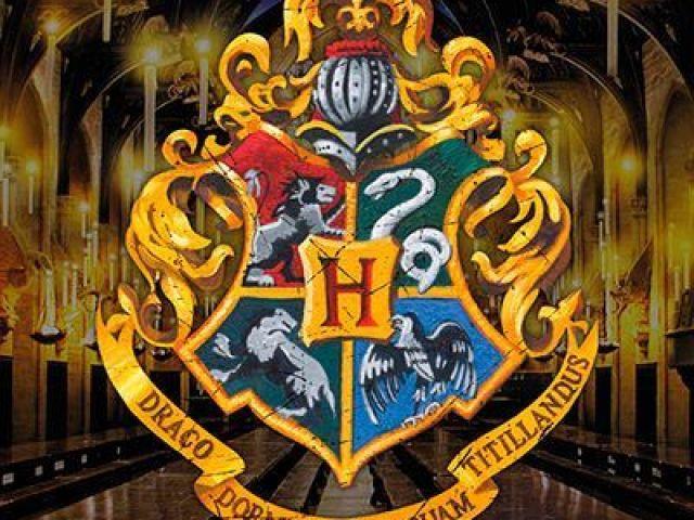 Que personagem de Harry Potter você seria?
