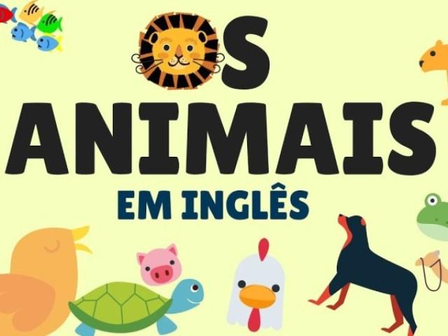 Animais em inglês: Teste seus conhecimentos!