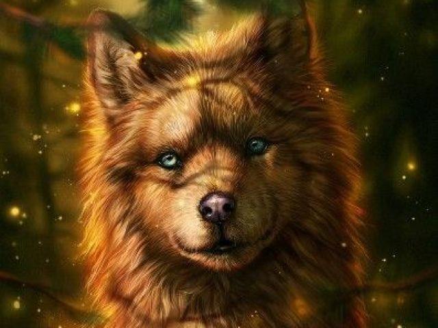 Qual é seu espírito animal?