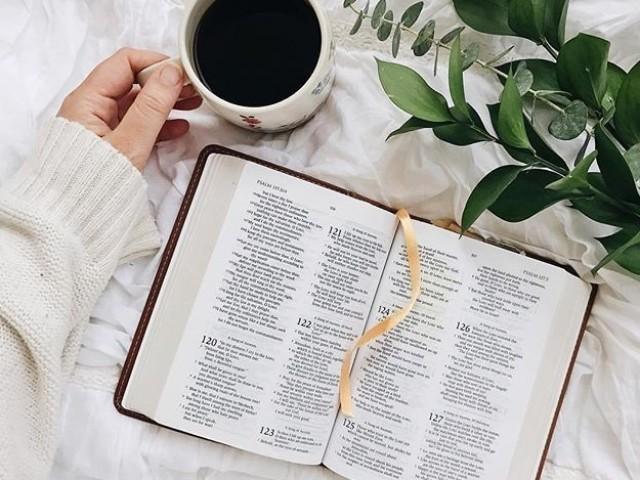 O quanto você conhece a Bíblia?