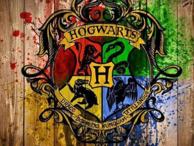 Qual seria sua casa em Hogwarts?