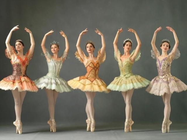 Qual fada madrinha do ballet Bela Adormecida você é?