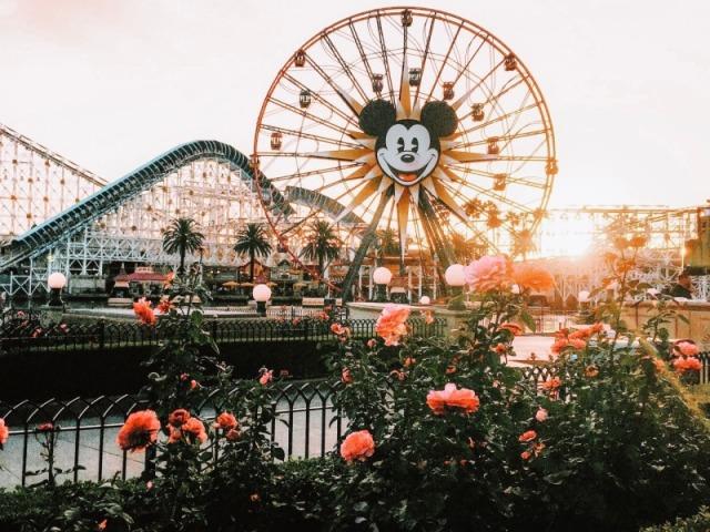 Monte um dia no parque de diversões e diremos qual deveria ser a sua idade!