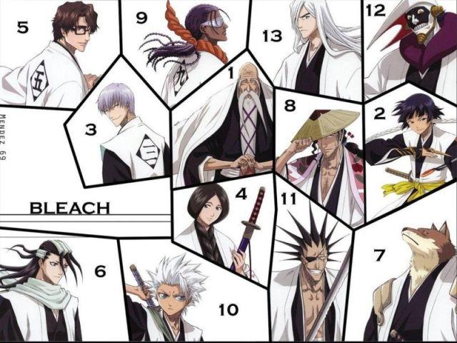 Você Pertenceria à qual das 13 Divisões em Bleach?