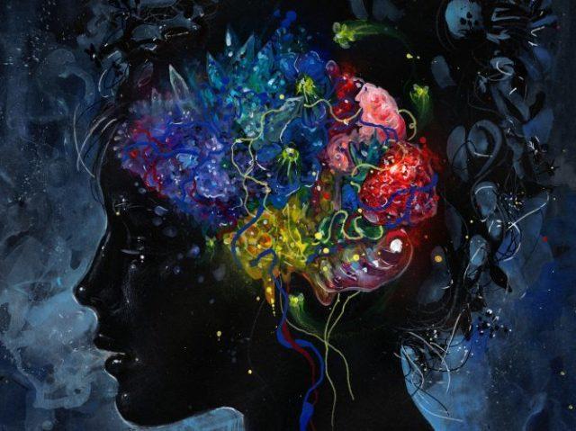 Qual é a zona do seu cérebro que mais lhe influencia?