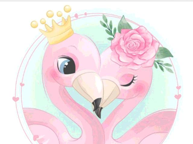 Você conhece mesmo flamingo?