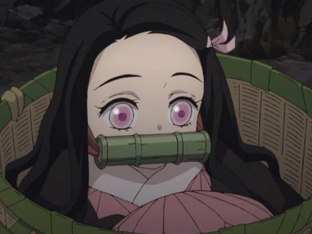 Com qual personagem feminina de Kimetsu No Yaiba você namoraria?