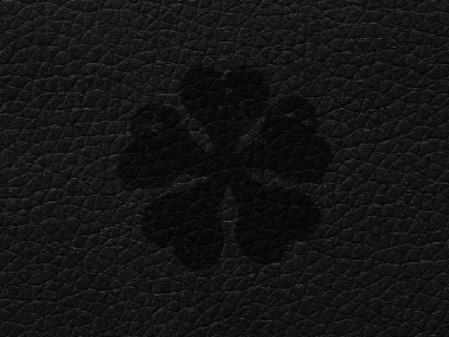 Qual seria sua magia em Black Clover?