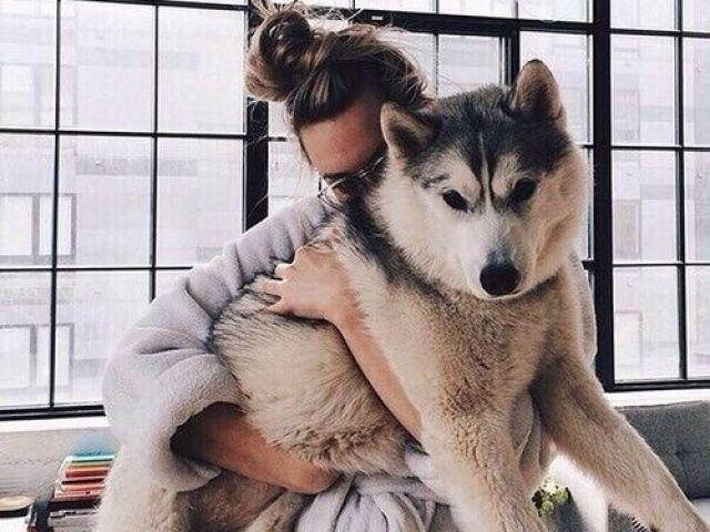 Monte sua casa e diremos qual animal de estimação você deveria ter!