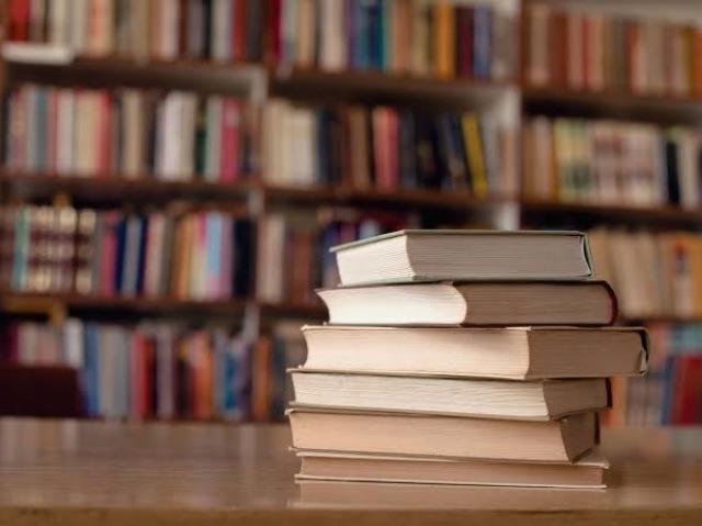 Escreva seu próprio livro e diremos se ele fará sucesso!