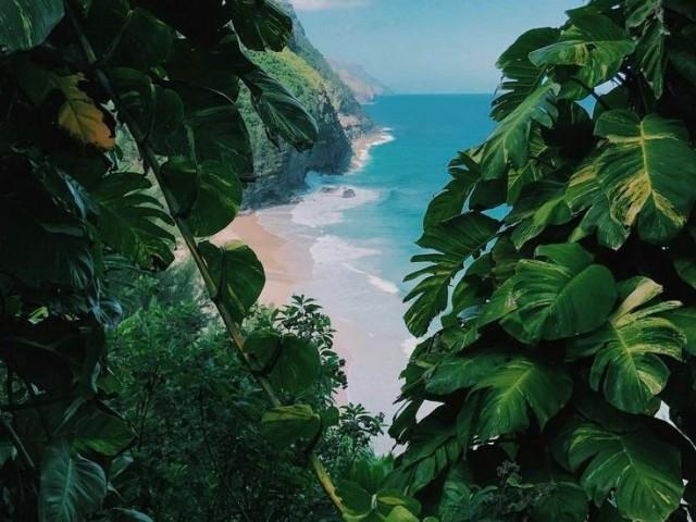 Monte sua vida na praia 🏝