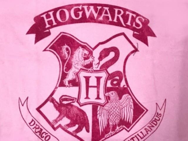 Conhece mesmo Harry Potter?