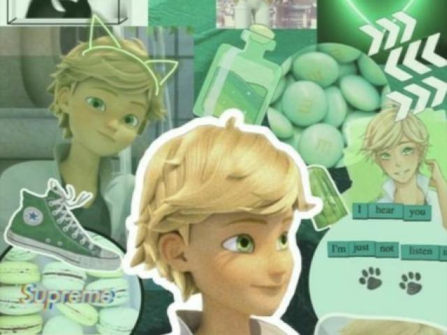 Você conheçe o Adrien Agreste?