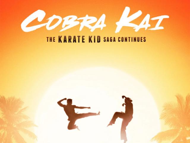 Cobra Kai - Quiz da 1ª Temporada
