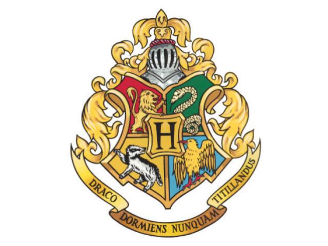 Hogwarts: Qual a sua casa?
