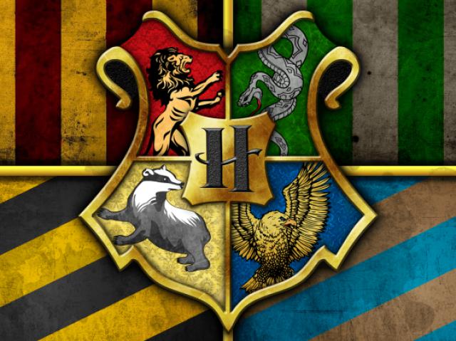 Você faz parte de qual casa de Hogwarts?