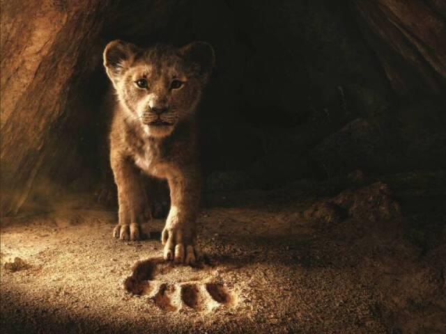 Provão do Rei Leão