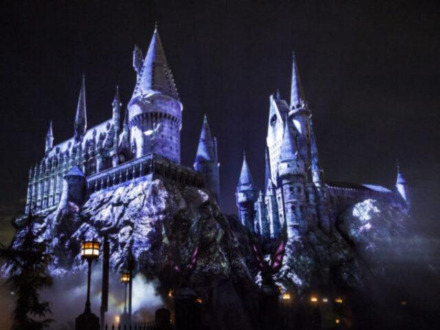 Quem você seria em Harry Potter? [feminino].