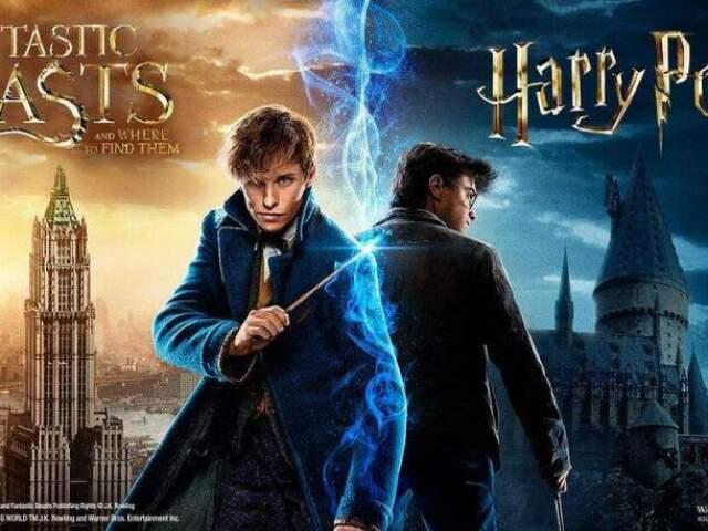Você é mais Animais Fantásticos ou Harry Potter?