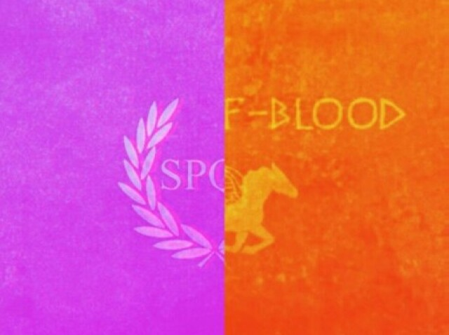De qual acampamento você é: Meio-Sangue ou Júpiter?