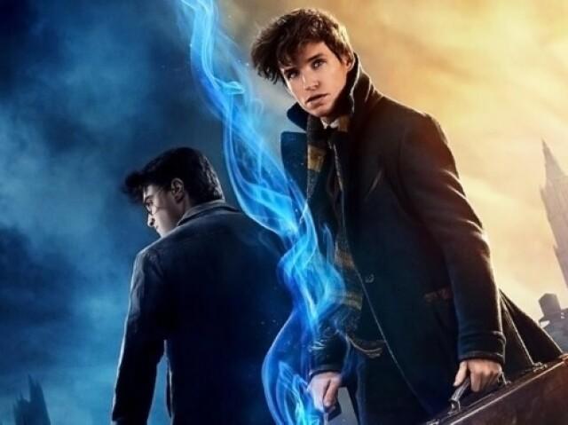 Você ė mais Harry Potter ou Animais Fantásticos?