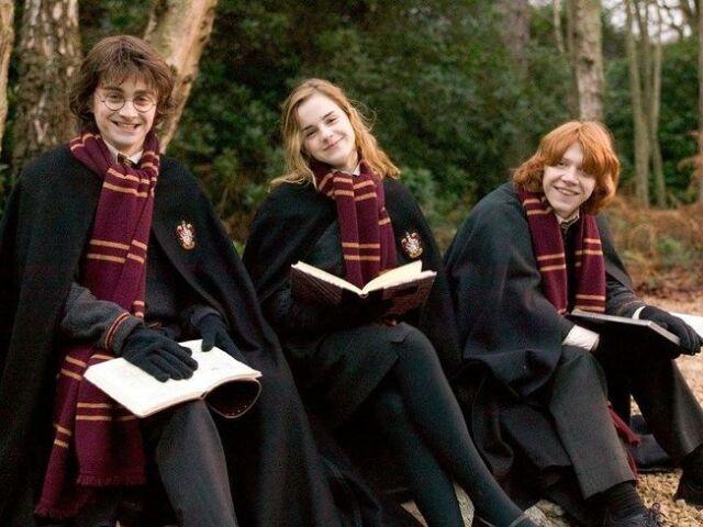 Quem seria seu crush em Harry Potter?