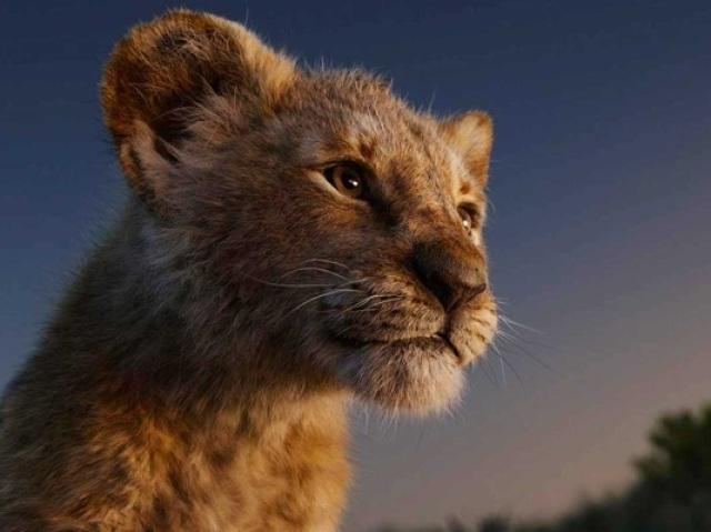 Quem é você em O Rei Leão?
