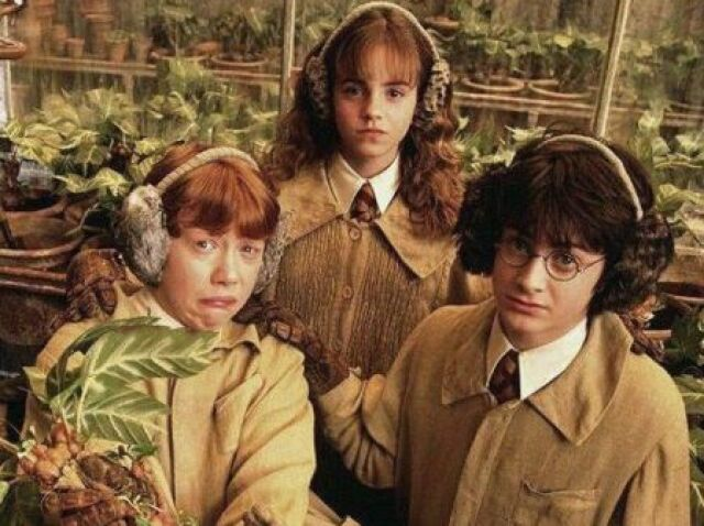 O quanto você conhece de Harry Potter? Nivel Hard   PARTE 1
