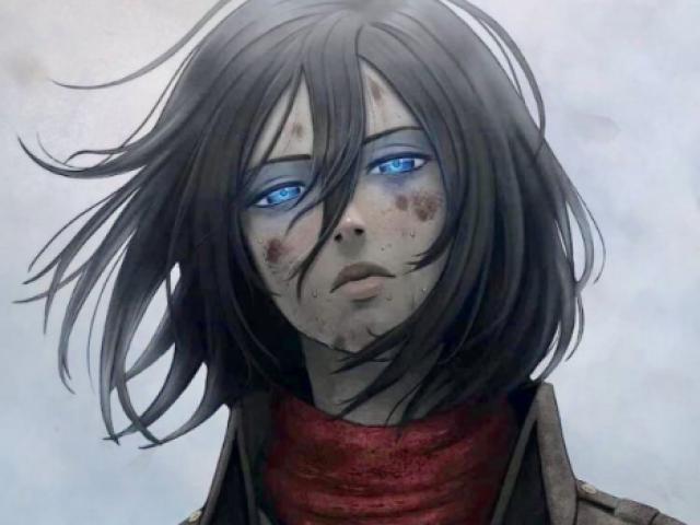O que você seria da combatente Mikasa Ackermam ?