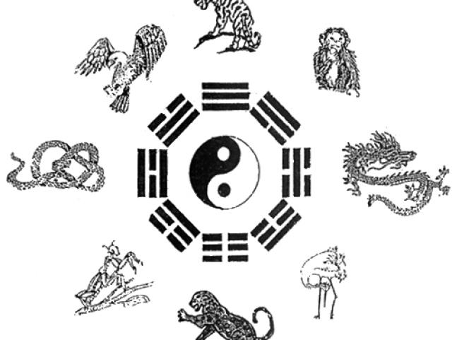 Qual dos estilos do Kung fu animais é o melhor para você?