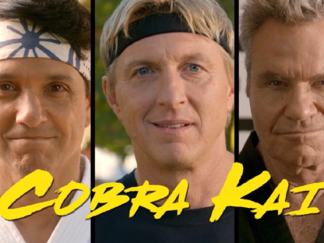 Qual seria seu Dojo em Cobra Kai? ALERTA SPOILER.