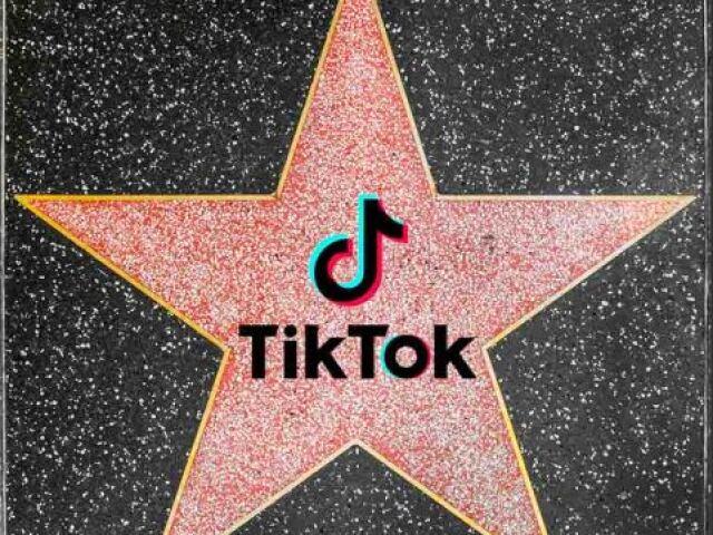 Como seria sua vida se você fosse uma Tiktoker famosa?