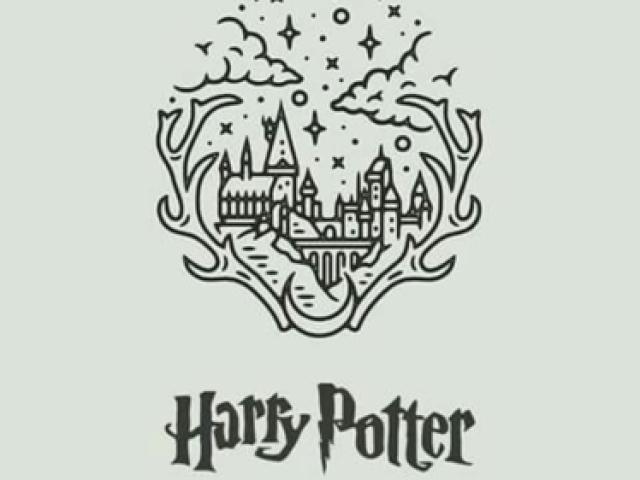 Qual sua casa em Hogwarts?