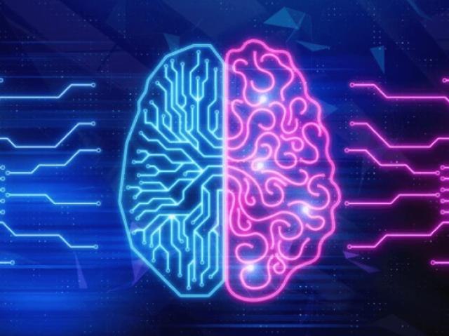Qual é o teu tipo de inteligência?
