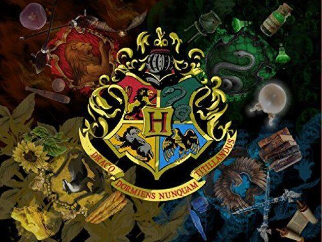 Qual a sua casa de Hogwarts?