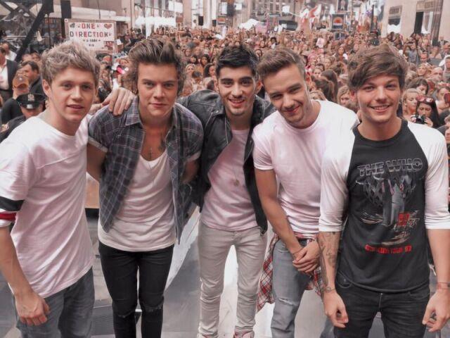 Qual membro do One Direction mais combina com vc
