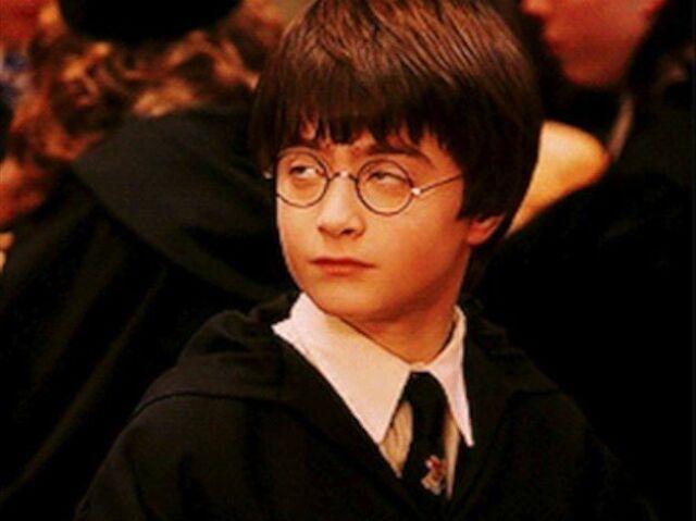 Vc realmente conhece Harry Potter? (livros/filmes)