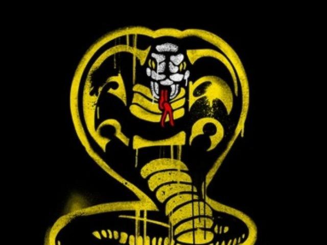 Você conhece mesmo Cobra Kai?