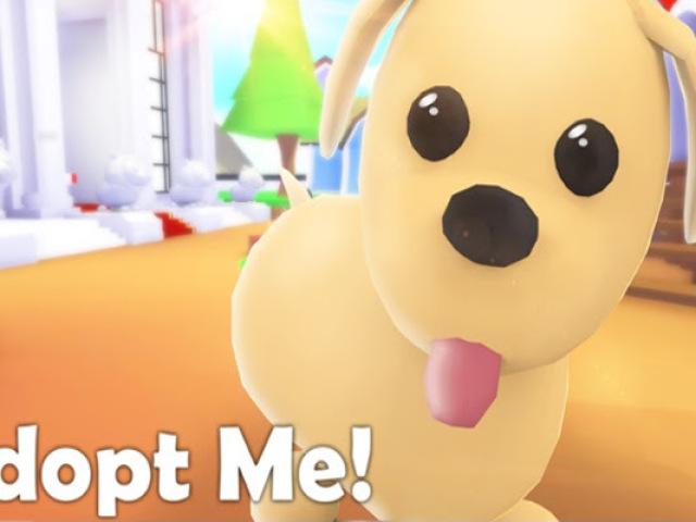 Você conhece adopt me?