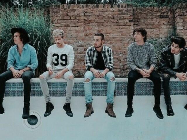 Você realmente conhece a One Direction?