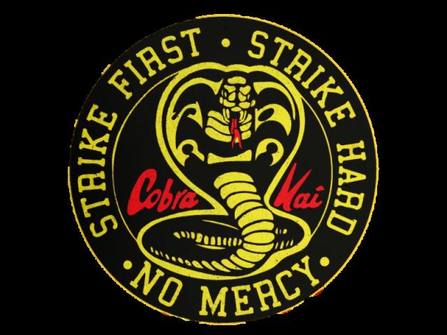 """Quem você seria em """"Cobra Kai""""?"""