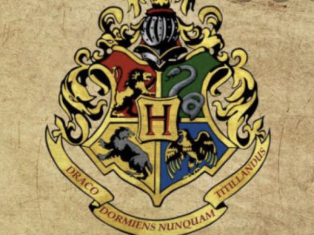 Qual é sua casa de hogworts?